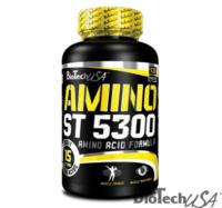Amino_ST_5300_120tab_2013_new