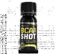 BCAA_Shot_2014